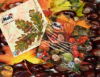 Servietten Herbst