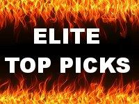 WWE Mattel Elite Top Picks